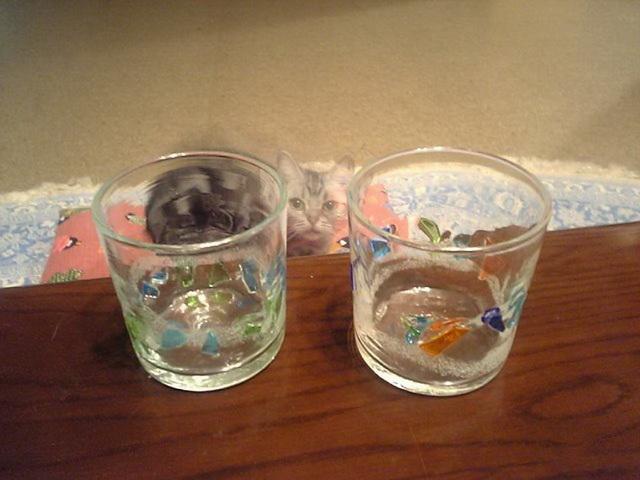 まだ使っていない琉球グラス